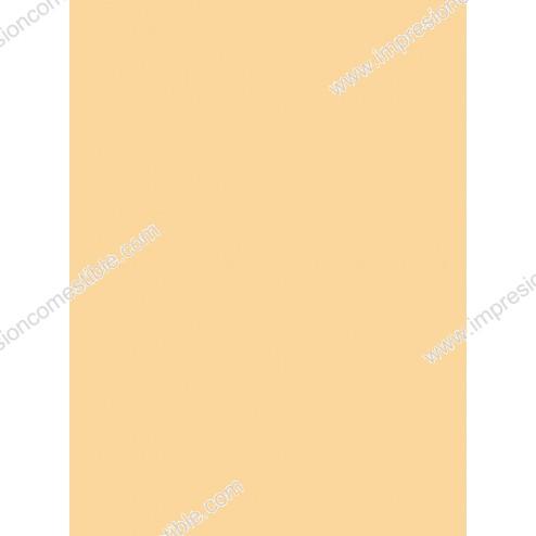 Wafer Paper Naranja